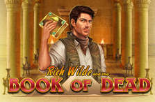 book of dead video slot logo